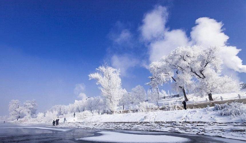 美如人間仙境的東北霧凇,你想看嗎?