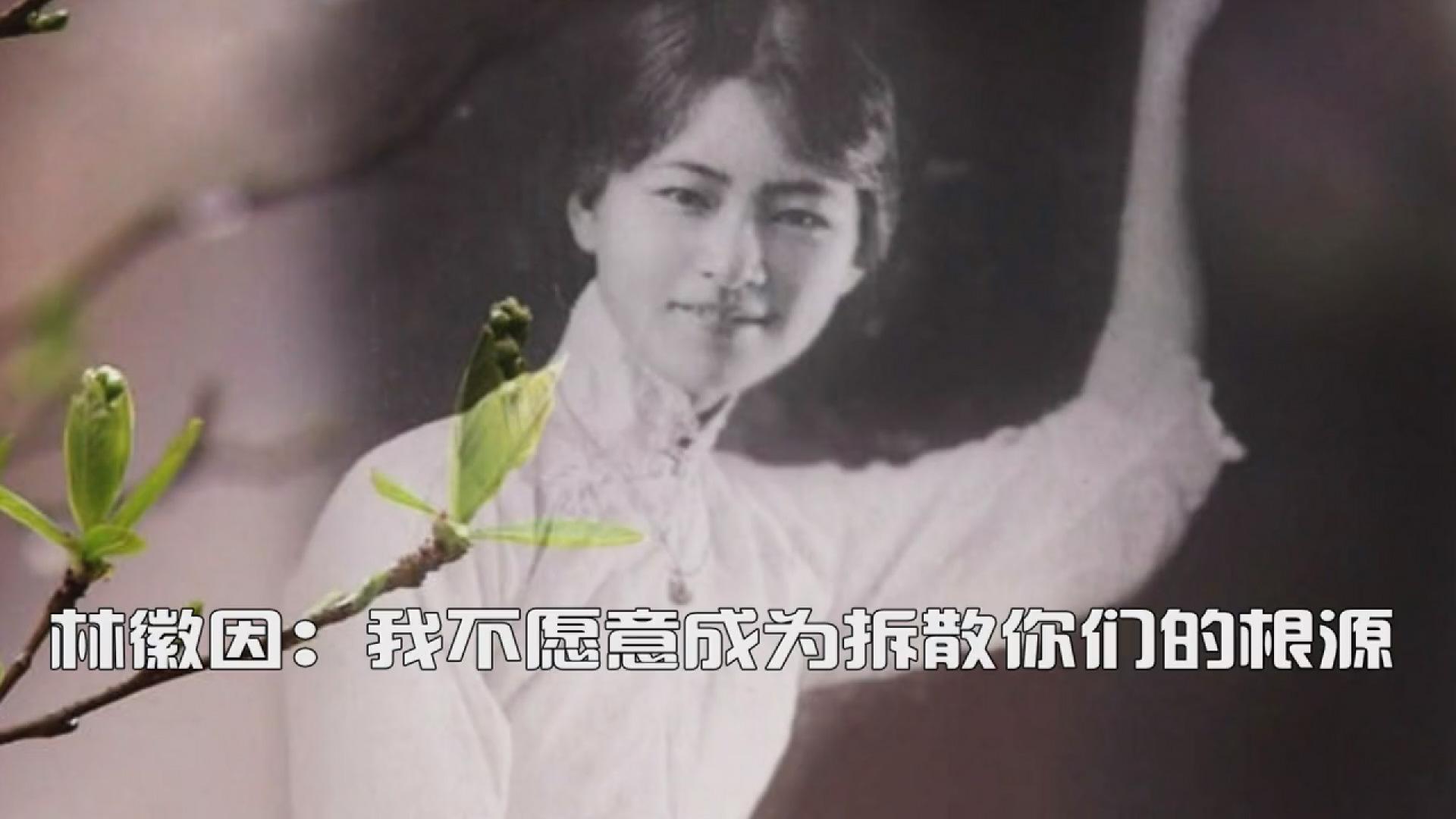 林徽因:我不愿意成为拆散你们的根源(上)