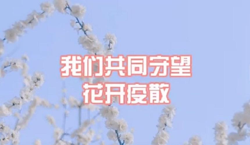 疫情防控 甘肃文旅特别报道丨《待得花开春又暖》草长莺飞疫消散