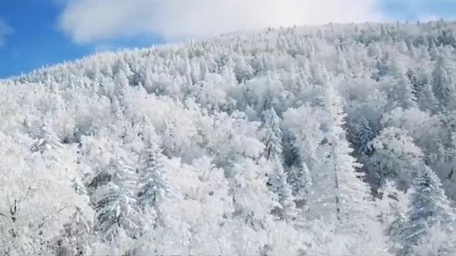 冰雪中的哈爾濱,滿足你對冬日童話的全部想象