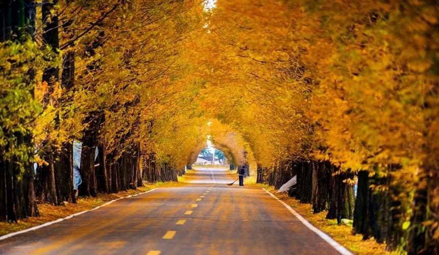 """4条中国最美省道 ▏这一生一定要有一次,轰轰烈烈的""""自驾游"""""""